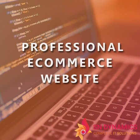 professional-ecommerce-website